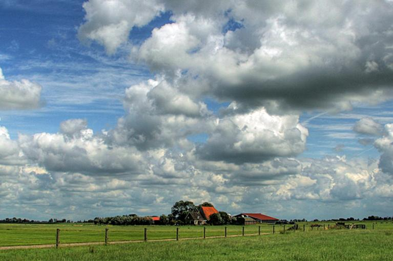 Friese landschap