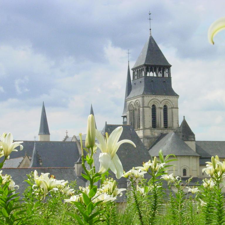 Wijnen en kastelen in de Loire